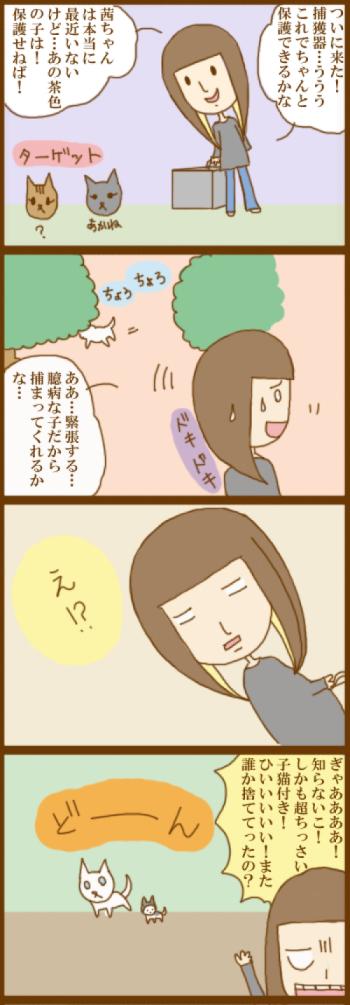 f:id:suzuokayu:20201130094820j:plain