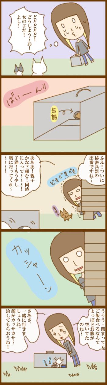 f:id:suzuokayu:20201130095013j:plain