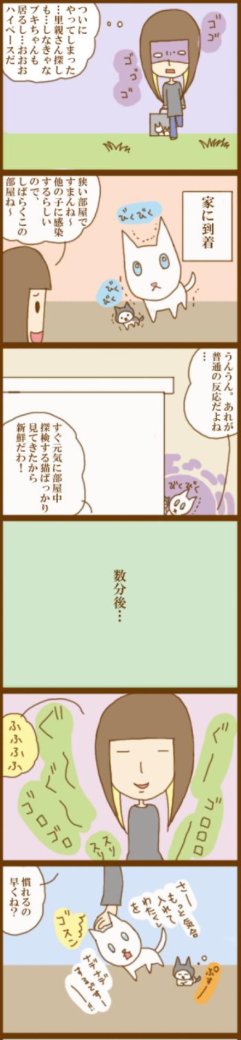 f:id:suzuokayu:20201130102401j:plain