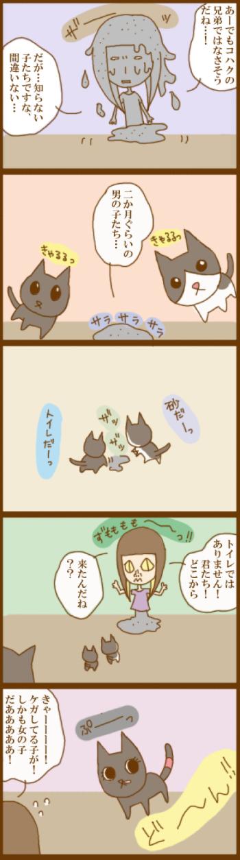 f:id:suzuokayu:20201130102835j:plain