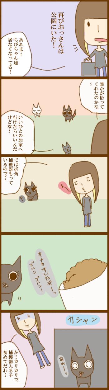 f:id:suzuokayu:20201201095809j:plain