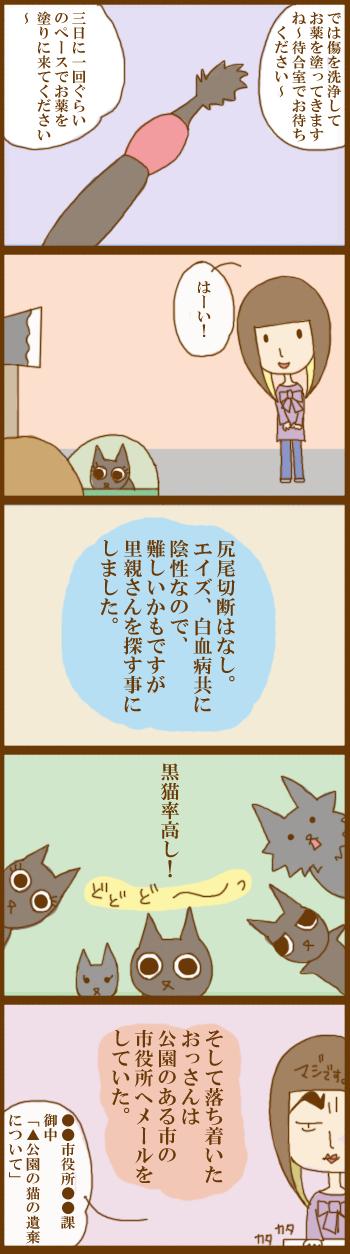 f:id:suzuokayu:20201201100407j:plain