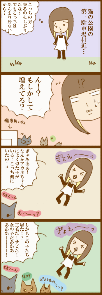 f:id:suzuokayu:20201202095430j:plain