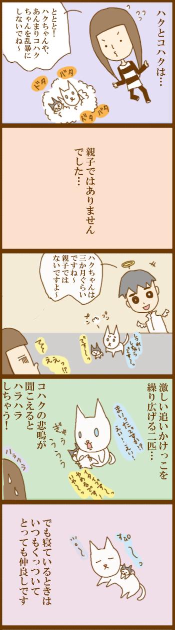 f:id:suzuokayu:20201202095635j:plain
