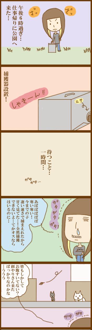 f:id:suzuokayu:20201202100049j:plain