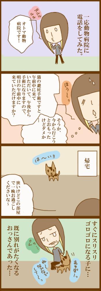 f:id:suzuokayu:20201202100759j:plain