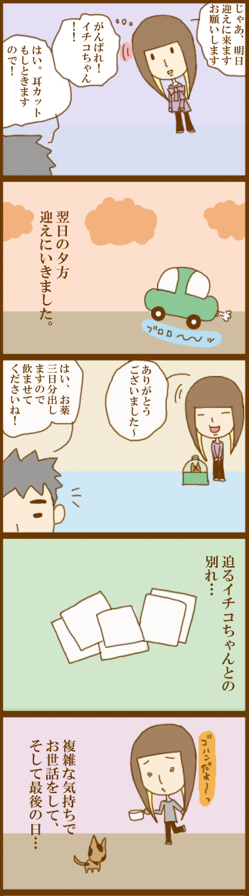 f:id:suzuokayu:20201202101632j:plain