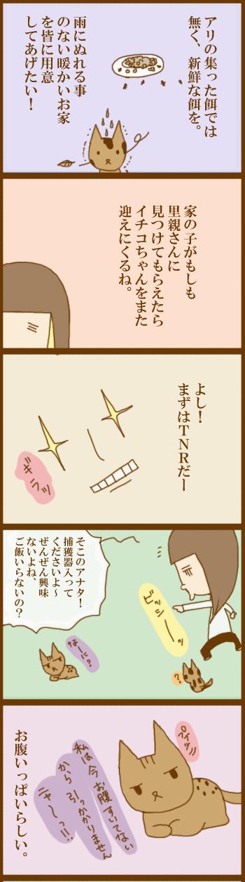 f:id:suzuokayu:20201202103238j:plain