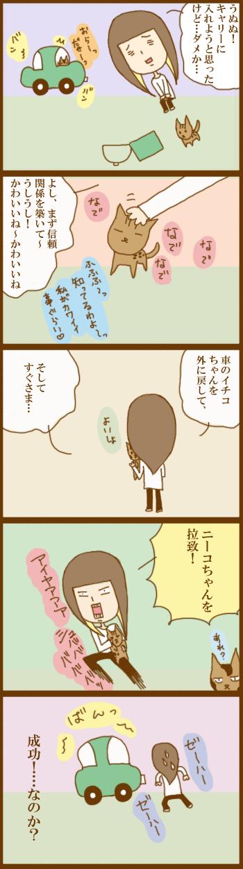 f:id:suzuokayu:20201203093721j:plain