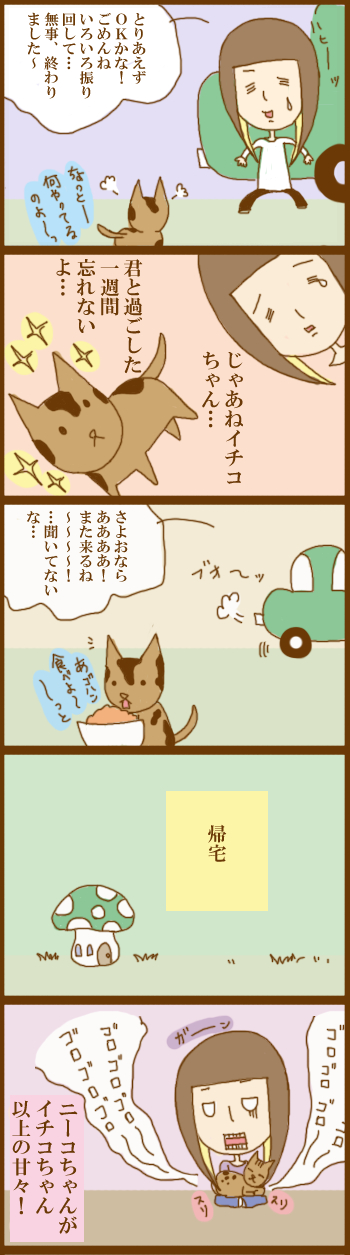 f:id:suzuokayu:20201203094230j:plain