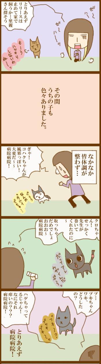 f:id:suzuokayu:20201203094736j:plain