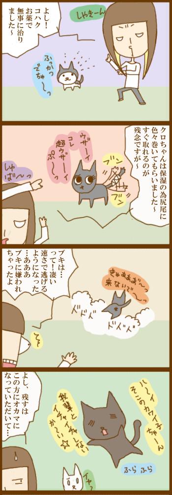 f:id:suzuokayu:20201203151103j:plain