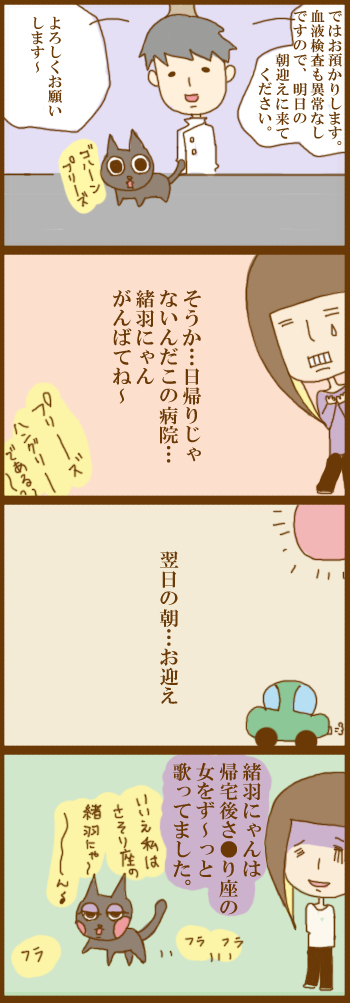 f:id:suzuokayu:20201203151246j:plain