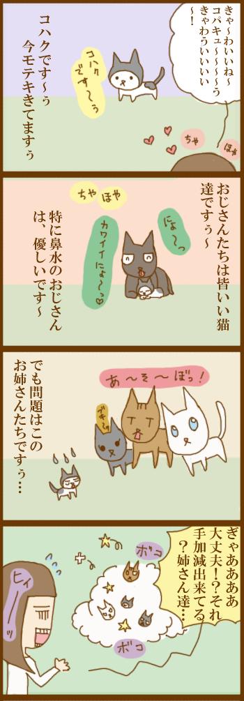 f:id:suzuokayu:20201204174919j:plain
