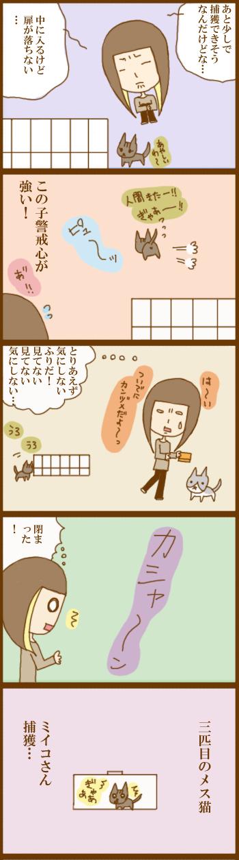 f:id:suzuokayu:20201204175332j:plain