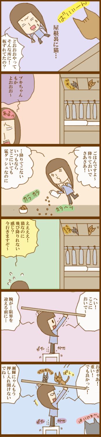 f:id:suzuokayu:20201205165644j:plain
