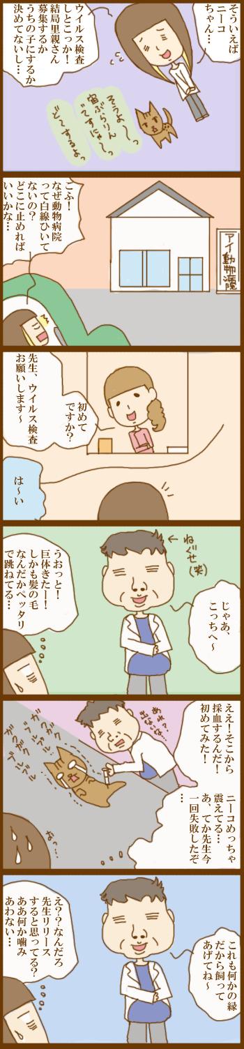 f:id:suzuokayu:20201205165909j:plain