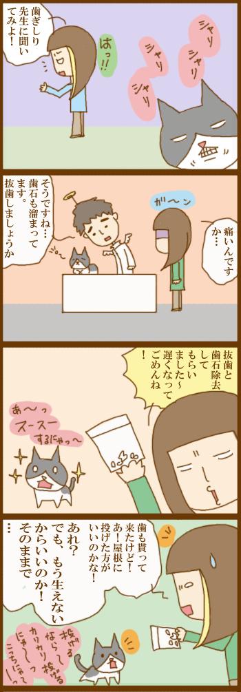 f:id:suzuokayu:20201205170817j:plain