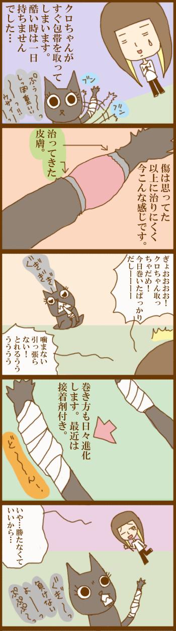 f:id:suzuokayu:20201205171152j:plain