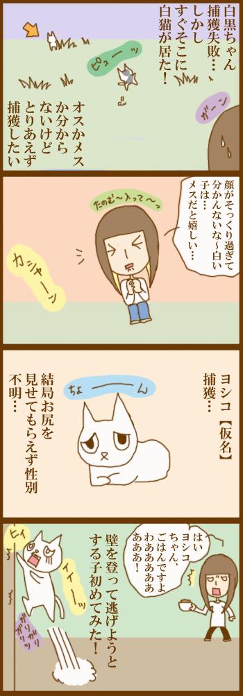 f:id:suzuokayu:20201205174711j:plain