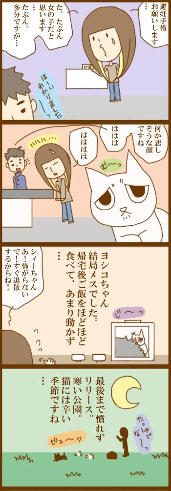 f:id:suzuokayu:20201206173008j:plain