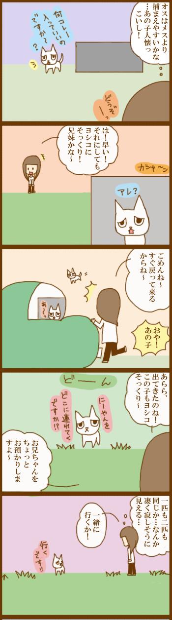f:id:suzuokayu:20201206180834j:plain