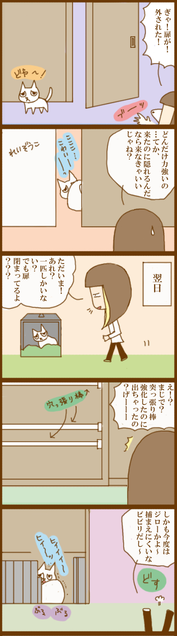 f:id:suzuokayu:20201207092142j:plain