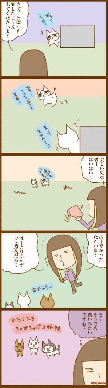 f:id:suzuokayu:20201207092632j:plain