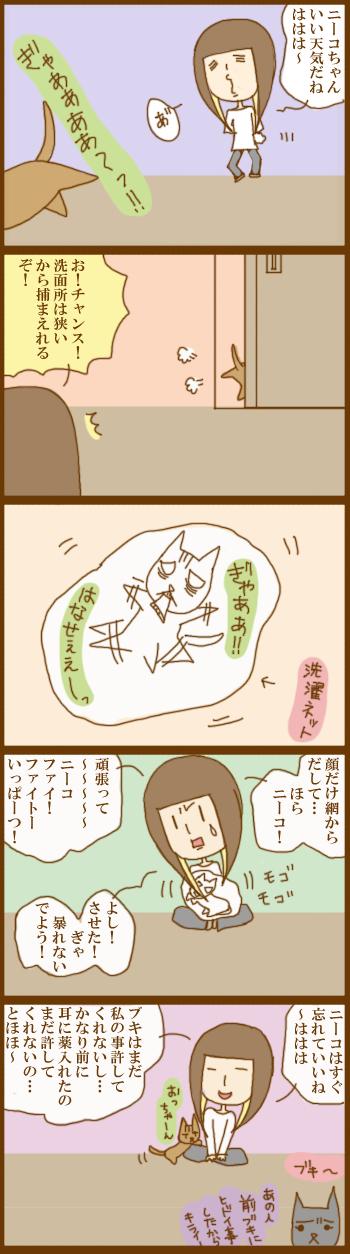f:id:suzuokayu:20201207092918j:plain