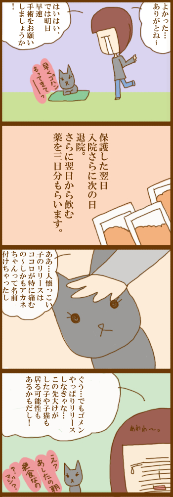 f:id:suzuokayu:20201207094719j:plain