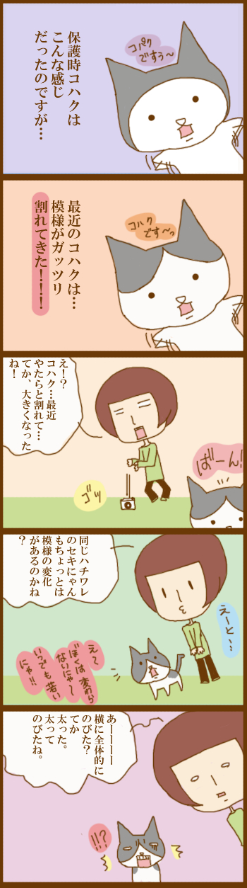 f:id:suzuokayu:20201208100015j:plain