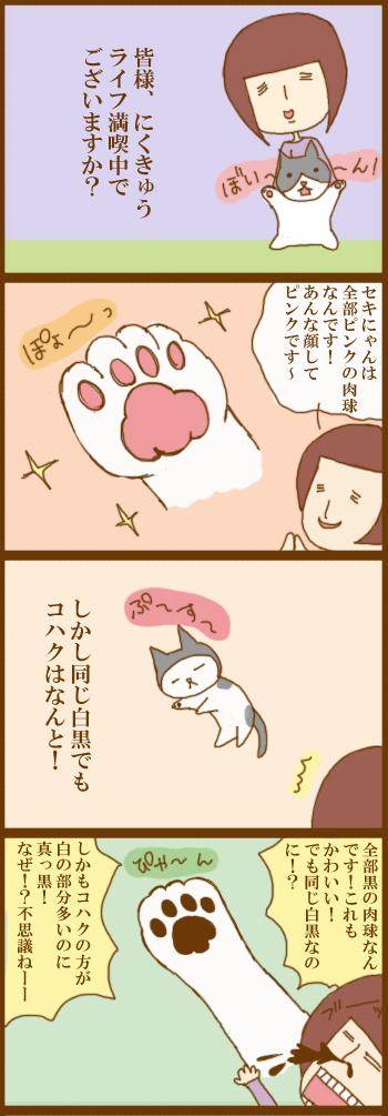 f:id:suzuokayu:20201208100619j:plain