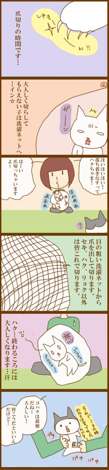 f:id:suzuokayu:20201208102241j:plain