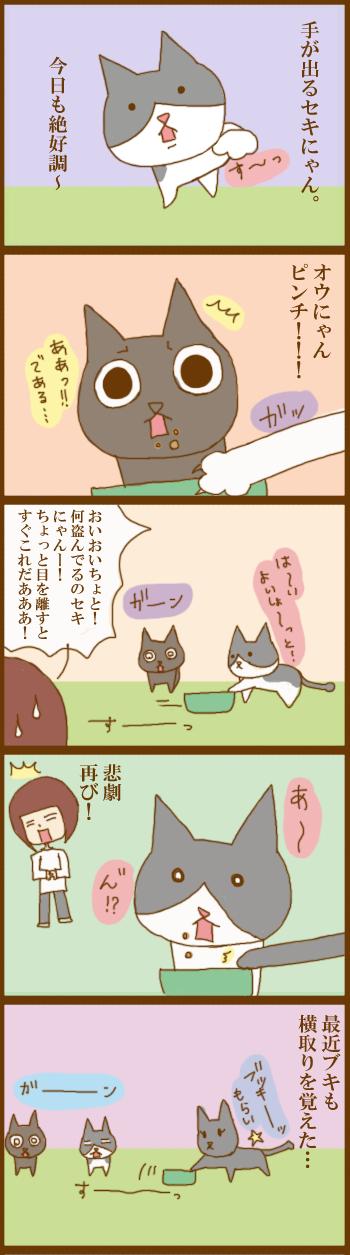 f:id:suzuokayu:20201208104544j:plain