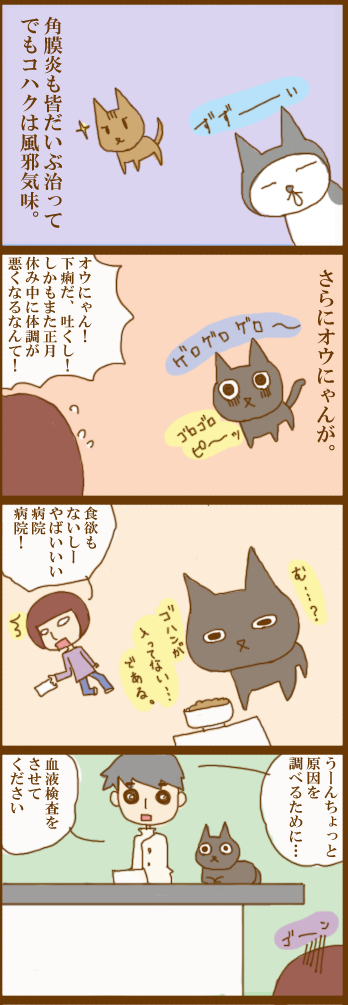 f:id:suzuokayu:20201208141322j:plain