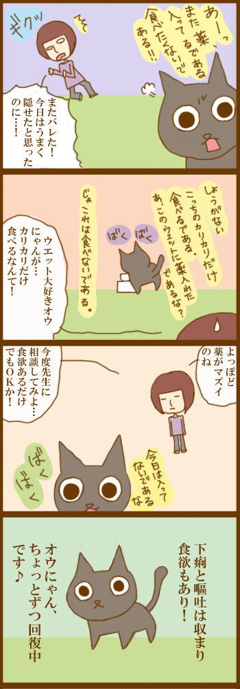 f:id:suzuokayu:20201209101700j:plain
