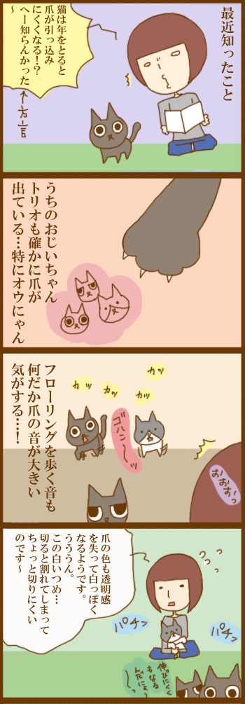 f:id:suzuokayu:20201209113210j:plain