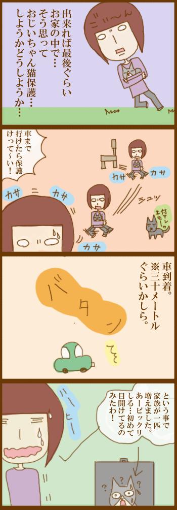 f:id:suzuokayu:20201210145055j:plain