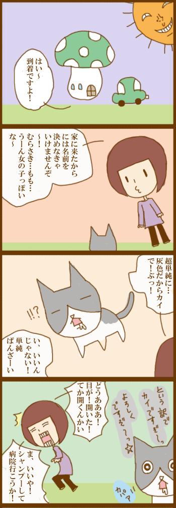 f:id:suzuokayu:20201210145437j:plain