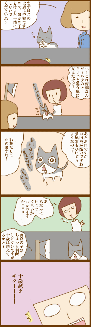 f:id:suzuokayu:20201211114928j:plain