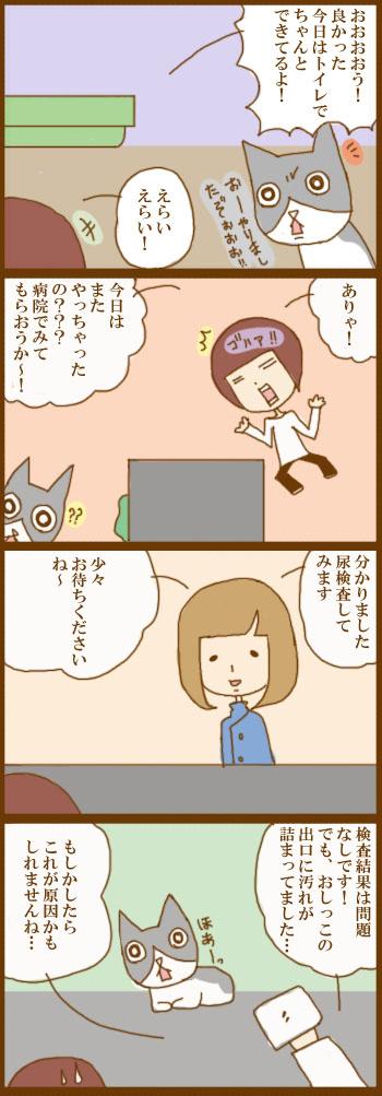 f:id:suzuokayu:20201211115213j:plain