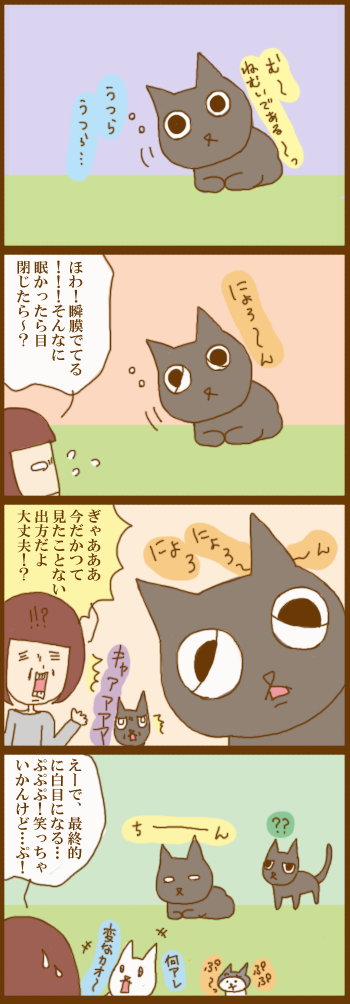 f:id:suzuokayu:20201214090315j:plain