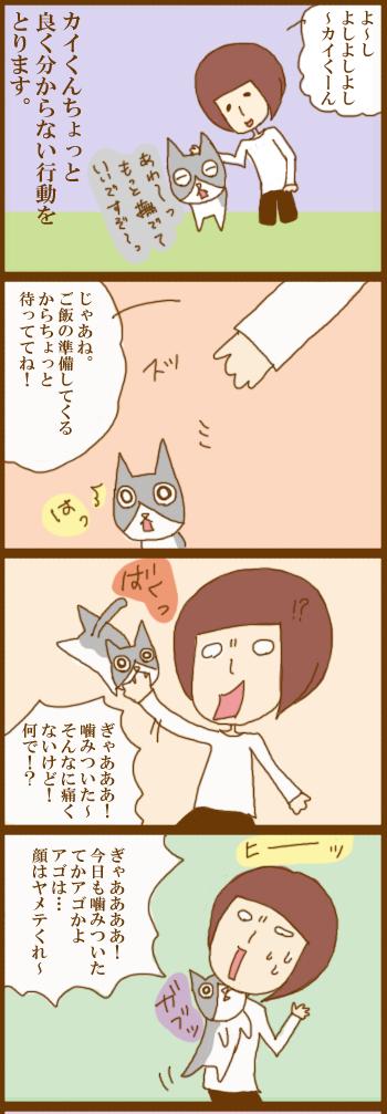 f:id:suzuokayu:20201214090733j:plain