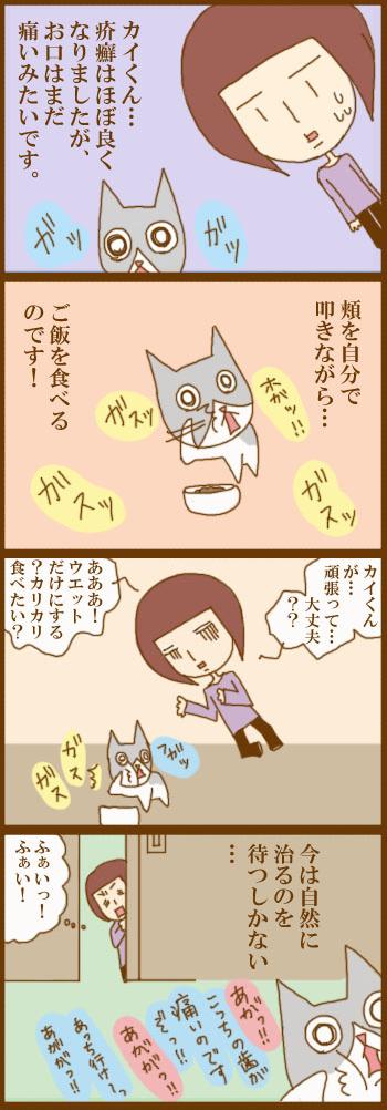 f:id:suzuokayu:20201214090952j:plain