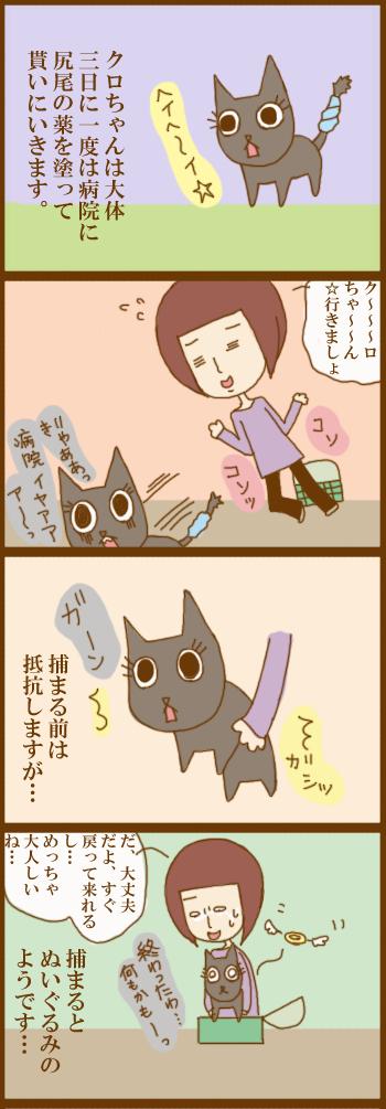 f:id:suzuokayu:20201214091153j:plain