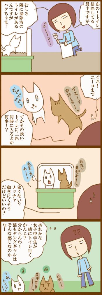 f:id:suzuokayu:20201215092310j:plain