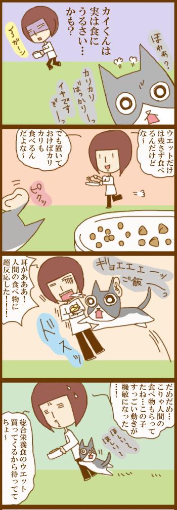 f:id:suzuokayu:20201215092841j:plain