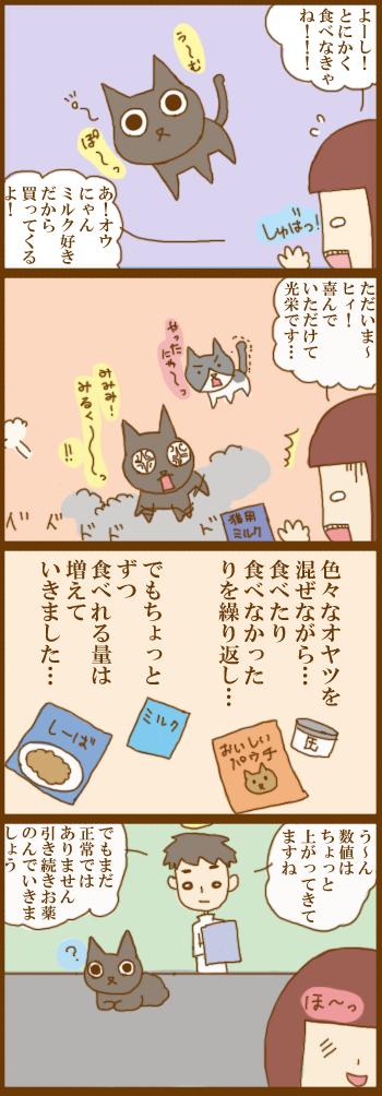 f:id:suzuokayu:20201215093834j:plain