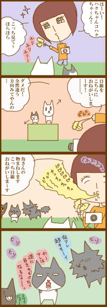 f:id:suzuokayu:20201215094913j:plain
