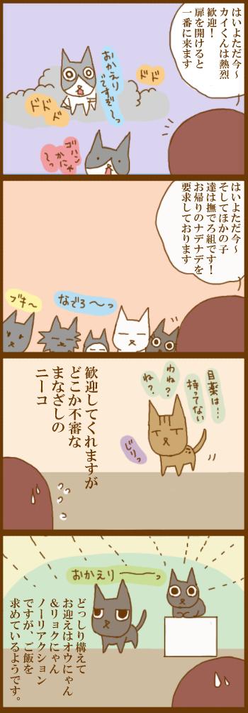 f:id:suzuokayu:20201216092029j:plain
